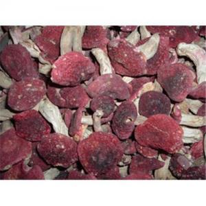 Quality Rare Wild Mushroom / authentic wild red mushrooms for sale