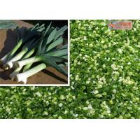 Quality Natural Green Dehydrated Vegetable Flakes Leek / Onion Flakes First Grade for sale