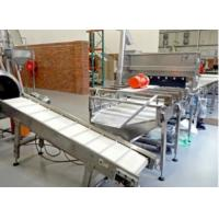 Quality Automatic Marshmallow Production Line , Marshmallow Extruder / Depositor 350KG/H for sale