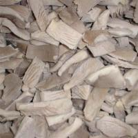 Quality mushroom frozen ,dry or in brine for sale
