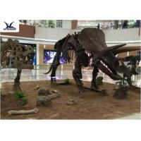 Quality Amusement Park Facility Life Size Dinosaur Skeleton Replica Artificial Replica Model for sale