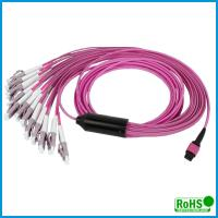 Quality Customized Multi Color MPO To MPO Cable , 24 Fibers Multimode Patch Cord for sale
