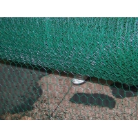 Quality farm 1/2inch Pvc Coated Hexagonal Wire Mesh BWG27 for sale