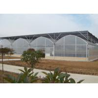 China Polycarbonate Plastic Film Greenhouse Bright Interior With Shading Net System on sale