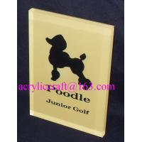 Quality Custom made branding advertising solid acrylic block wholesale for sale