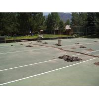 Quality Artificial grass for tennis court for sale
