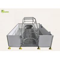 Quality Good Warming PVC Board Hog Farrowing Cage Automatic Piglet Nursery Stall Pen for sale