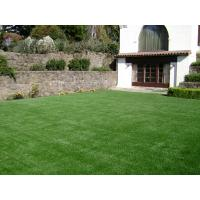Buy cheap indoor green grass from wholesalers