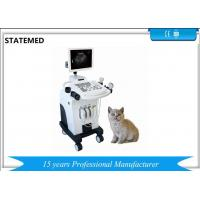 Quality Gray Scale Trolley Type Ultrasound Scanner For Dog Pregnancy Examination for sale