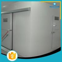 China flower fruits and vegetables used cold room for sale on sale