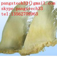 Quality Chondroitin Sulfate - Shark Cartilage(85%/90%/95%) for sale