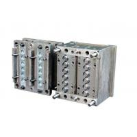 Quality Plastic Injection Mould Auto Parts With Plastic injection Mould standard HASCO for sale
