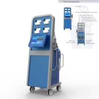 China 50Hz Pad Cryolipolysis Shock Wave Machine for Cellulite Removal on sale