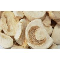 Quality Natural Healthy Freeze Dried Food Fungus Mushroom Agaricus Freeze Drying Slice for sale