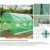 Quality Black out greenhouse garden greenhouse film greenhouse PC &glass greenhouse,Poly plastic film green house for cucumber for sale