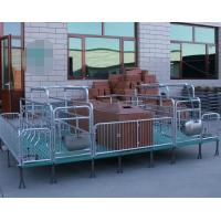 Quality Livestock Piglet Incubator Galvanized Steel Pipe Commonly Type Frame for sale