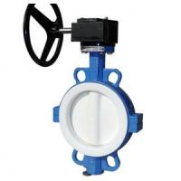 Quality Full PTFE Lined Butterfly Valve Seat For Wafer / Lug / Flanged Valve 2