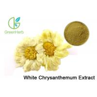 China UV / HPLC Test Plant Extract Powder Yellow Chrysanthemum Flower Extract on sale