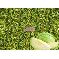Quality Organic Dehydrated cabbage flakes ,  Air Dehydrating cabbage rich in taste for sale