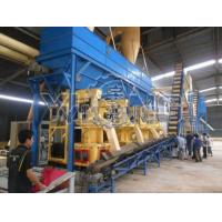 Quality Wood Pellet Production Line With CE Certificate for sale
