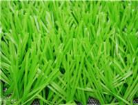 Quality Sports GrassFootball-WF-W10000 Light for sale