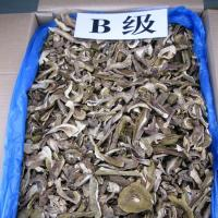 Quality Factory Price Sliced Dried Boletus Edulis  B Grade for sale
