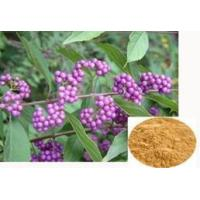 Buy cheap Callicarpa nudiflora Extract、flavones 24% $25 ★The from Wholesalers