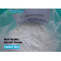 Quality Sustanon Agent Cutting Steroid Testosterone Phenylpropionate Powder for Muscle Strength for sale