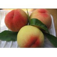 China Peach Flavour on sale