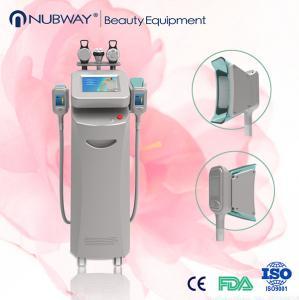 China Etg50-4s Cryolipolysis Machines/Effective Cryolipolysis on sale