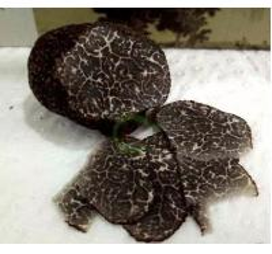 Buy Black Truffle noire Wild perigord truffle Tuber melanosporum organic sliced Hei Song lu at wholesale prices
