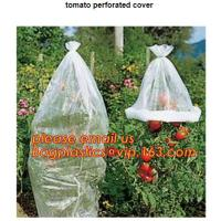 Quality Garden used tomato plastic film cover,high light transmittance solar control seeding nursery greenhouse covers,100% virg for sale