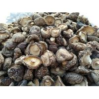 China Dried organic shiitake mushrooms wholesale on sale