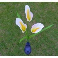 Quality Solar Flower Lights - Outdoor Waterproof LED Flowers Calla Lily for Garden, Path, Landscape, Patio, and Lawn for sale