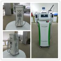Quality 2018 newest Cryolipolisis freezing fat zeltiq coolsculpting machine for sale for sale