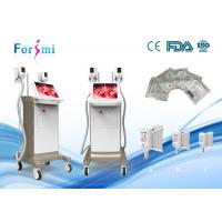 Quality Freez Fat Only one session! |  Forimi cryo slimming machine easy to remove unwanted fat for sale