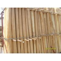A Grade Birch Rotary Cut Veneer With Thickness 0.2mm - 0.6mm