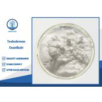 Quality Muscle Gain Oral Anabolic Steroids , Testosterone Enanthate Powder CAS 315-37-7 for sale
