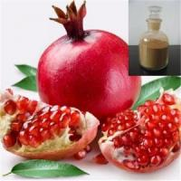 Quality 100% Pomegranate Hull Extract / Water Soluble Pomegranate Extract for sale