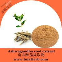 Quality High Quality ashwagandha root powder Extract  for Men Health 1%;2.5%;3%;5% Withanolides for sale