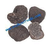 Quality black truffle(tuber indicum) for sale