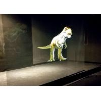 Quality Multifunctional Hologram Advertising Display Systems For Entertainment for sale