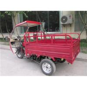Quality Cargo Three Wheeler Manufacturer for sale