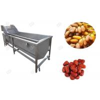 Quality GELGOOG Jujube Dates Fruit Washing Machine Continously High Capacity for sale