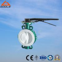 Quality Wafer Lug PTFE/PCTFE/FEP/PFA Lined Butterfly Valve (GAD71F) for sale