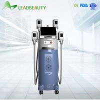 Quality cryolipolysis slimming machine Price for sale