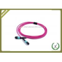 Buy cheap MTP TO MTP OM4 12 Core Fiber Optic Patch Cord Violet Color Multimode LSZH Jacket from wholesalers