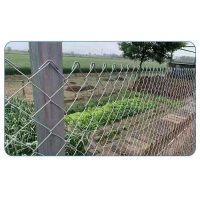 Quality 2m Height Garden Iron Wire Mesh 1.5mm Pvc Coated Chain Link Fence for sale
