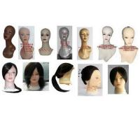 China Sell training head,practising wig and Lesson wig---100% human hair, mannequin head,model head on sale