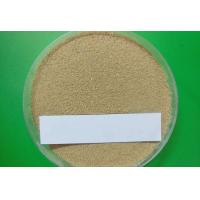 Quality  9014-01-1 Subtilisin Powder Pharmaceutical Raw Materials For Dishwashing Detergents for sale